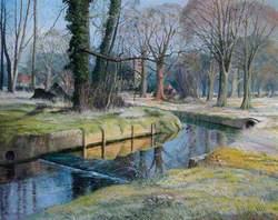 Beddington Park, Surrey