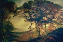 Moor of Rannoch