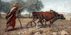 Ploughing Mount Sion, Jerusalem
