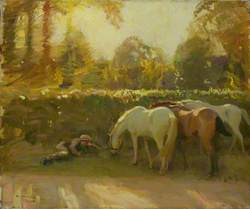 Gypsy Horses Grazing by a Roadside with a Boy Asleep on a Verge