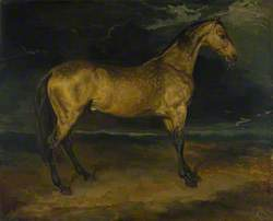 A Horse frightened by Lightning