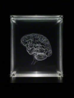 Brain of the Artist