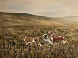 Moorland with Three Dogs