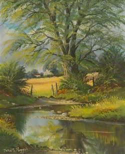 The Willows, Stewartstown