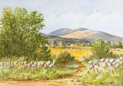The Mournes near Kilkeel