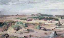 Landscape of the Black Rabbits