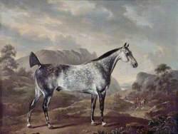 Dappled Grey Horse in a Landscape