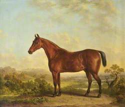 Chestnut Horse in a Landscape with a Fox Hunt
