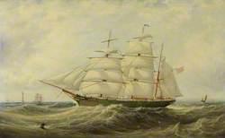 The Barque 'Petunia'