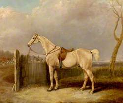 Tethered Horse and Hunt