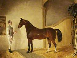 Groom with Hunter in the Stables