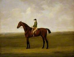 'Anvil' with Charles Handley up, and Running for the Whip on Newmarket Heath in the Background