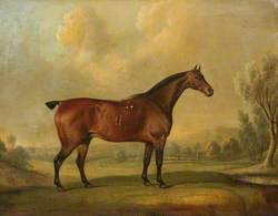 A Chestnut Stallion in a Landscape