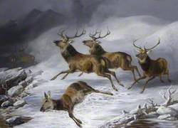 Five Stags Fleeing and a Dead Doe Lying in the Snow