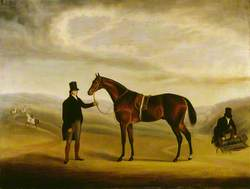 A Dark Bay Racehorse Held by a Trainer in a Landscape