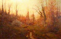 Woodland Scene with a Stream and Daffodils