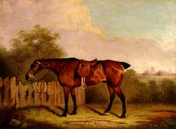 A Saddled Bay Hunter in a Landscape, beside a Fence
