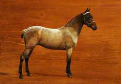 A Roan Horse