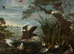 River Scene with Ducks and Geese Being Attacked by Hawks