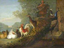 Peacock and Chickens, with a View of a House