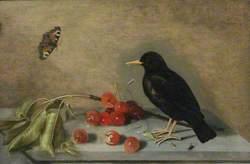A Blackbird, Butterfly and Cherries
