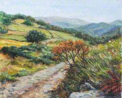 Path to Llenyich Ylhoch