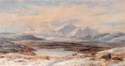 Meirioneth Moors