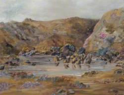 Treffgarne Quarry Workings