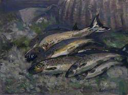 A Basket of Trout