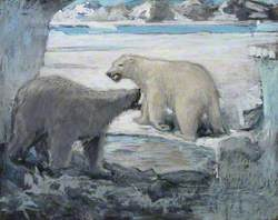 The Bears' Courtship, Greenland