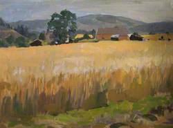 The Barley Field