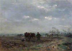Winter Ploughing