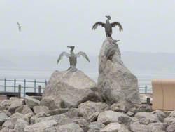 Cormorants (Rock Islands)