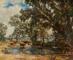 Constable's County