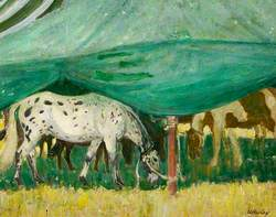 Two Tethered Horses Grazing underneath a Tent