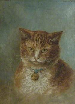 Ginger Cat with Blue Ribbon and Brass Bell around Neck
