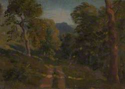 Wooded Landscape with Farm Track