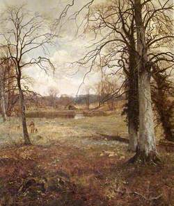 Early Spring at Abinger