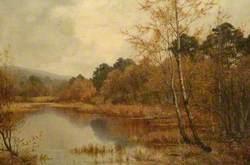 Black Lake, Waverley