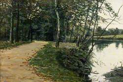 Woodland Path by Water