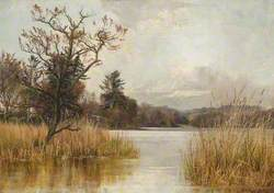 Early Spring on Monreith Loch, Wigtonshire