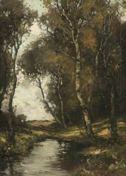 Ayrshire Woodland Scene