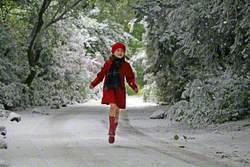Proposal 3, Midsummer Snowstorm