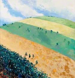 Striped Field, Strathdon