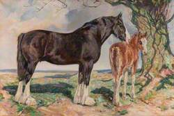 A Clydesdale Mare, 'Imogene', and Foal, 'Jean Armour'