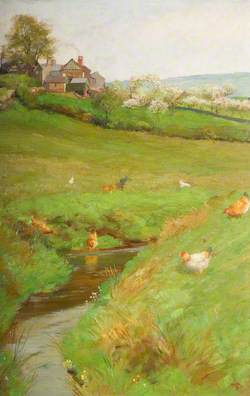 Springtime, Haracles Hall Field, Rudyard