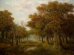 In the New Forest