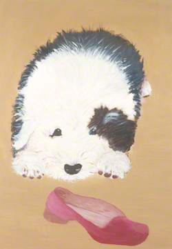 A Dog and Slipper