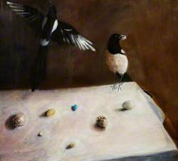 Magpies with Stolen Eggs?