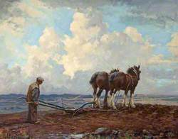 Ploughing in Strathmore